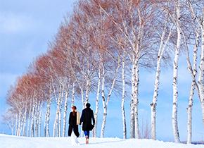 北海道 美瑛-phototour婚纱摄影照