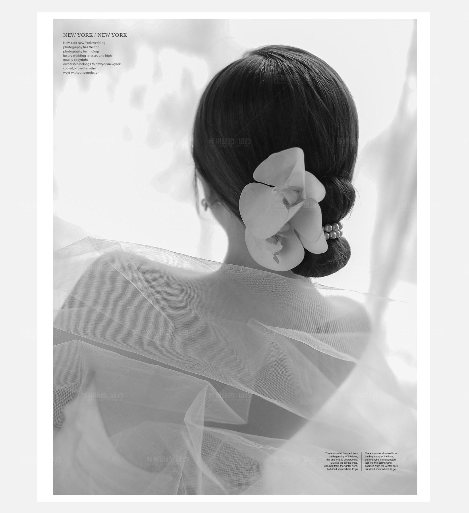 Mr.张 & Ms.罗(纽约纽约最新客照)婚纱摄影照